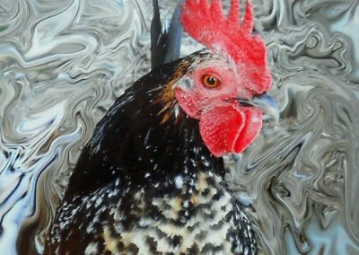 Hopewell Rooster by Donna Meyers