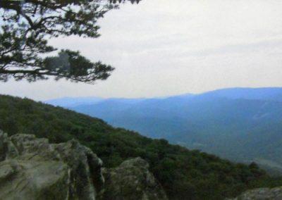 Blue Ridge Beauty by Lisa Foster