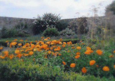 Garden View at Knappogue