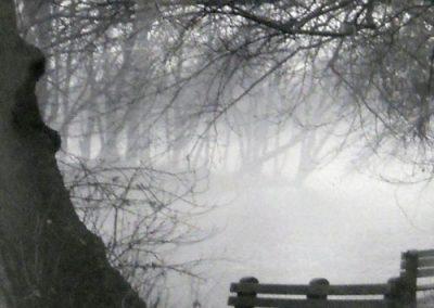 Mysterious Fog by Mary Kosar