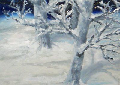 Winter Splendor by Alita Abruzzese