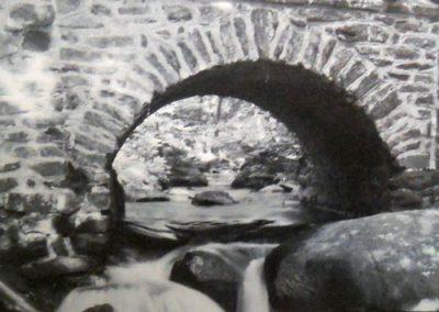 Face in the Bridge by Marla Burke