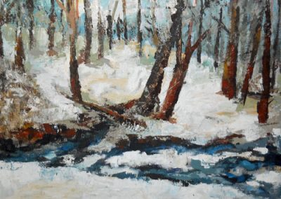 Frozen Stream by Cynthia Scherer