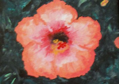 Hibiscus by Donna Meyers