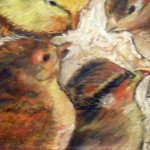 Chicks by Joni Peters
