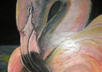 Flamingo by Joni Peters