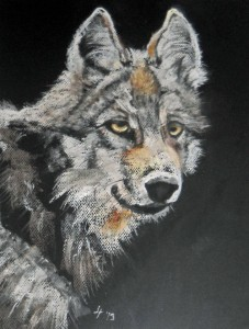 Grey Wolf by Joann Feeney