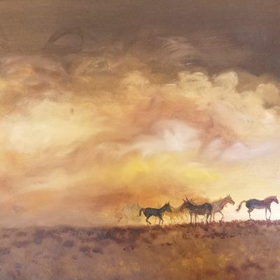 shaw wild horses